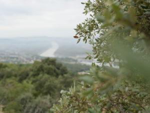 location-nature-troglodytes-du-ventoux